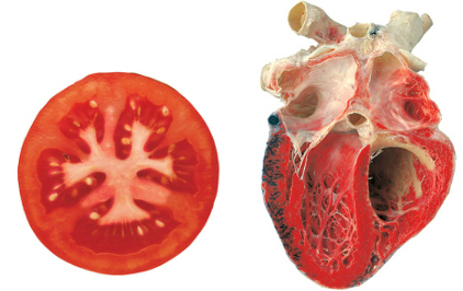 Healthy Foods Shaped Like Body Parts